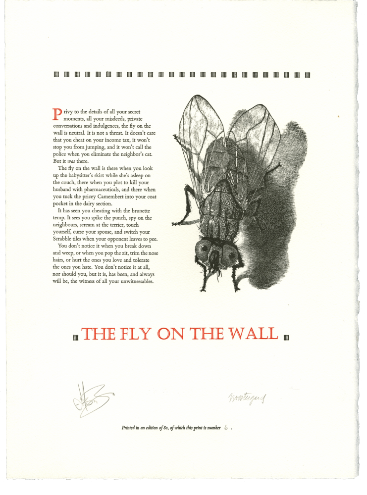 The Fly On The Wall. Jason BRINK, Jim WESTERGARD.