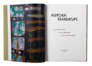 Aurora Teardrops; | Poems by Harold Budd | Paintings by Jane Maru | Introduction by David...